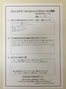 voice_minami